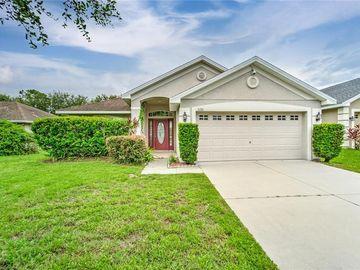 11201 IRISH MOSS AVENUE, Riverview, FL, 33569,