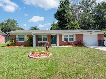 1208 MITCHELL STREET, Brandon, FL, 33511,