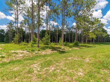 None PONY POND ROAD, Dade City, FL, 33523,