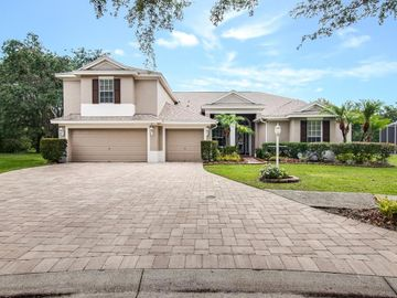17215 KEELY DRIVE, Tampa, FL, 33647,