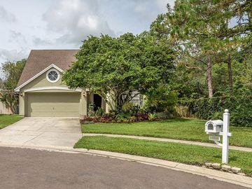 14520 THORNFIELD COURT, Tampa, FL, 33624,