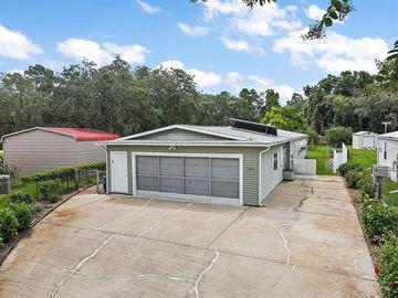 10930 ISAACS COURT, Leesburg, FL, 34788,