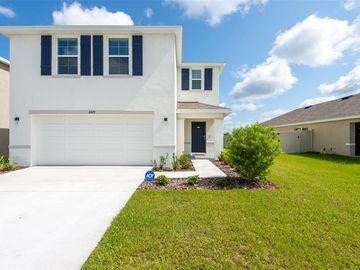 11429 STONE PINE STREET, Riverview, FL, 33569,