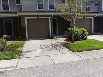8007 BALLY MONEY ROAD, Tampa, FL, 33610,