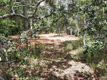 None TOUCAN TRAIL, Spring Hill, FL, 34606,