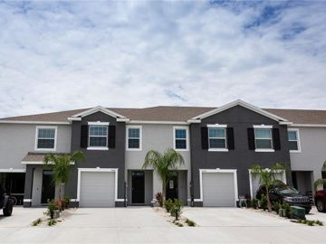 16166 TRADITIONAL BLUFF PLACE, Odessa, FL, 33556,