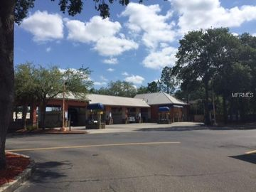 2451 E BEARSS AVENUE, Tampa, FL, 33613,