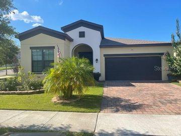 9267 CHANDLER DRIVE, Groveland, FL, 34736,