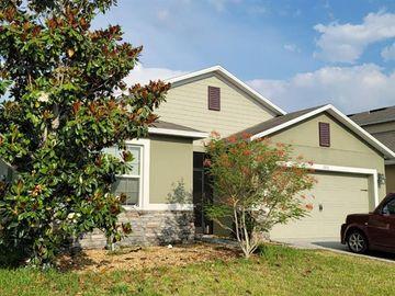 1951 BANNER LANE, Saint Cloud, FL, 34769,