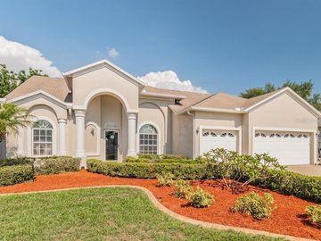 9810 WYDELLA STREET, Riverview, FL, 33569,