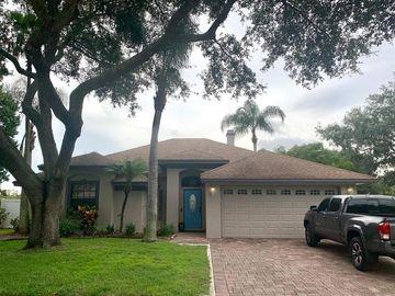 12011 VERMILLION WAY, Riverview, FL, 33569,