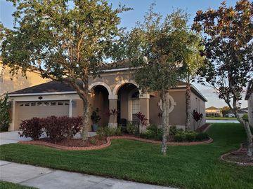 20115 STILL WIND DRIVE, Tampa, FL, 33647,