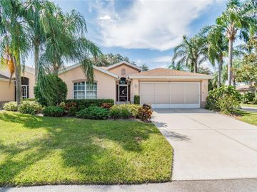 1027 NEW WINSOR LOOP, Sun City Center, FL, 33573,