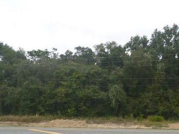 None CORTEZ BOULEVARD, Dade City, FL, 33523,
