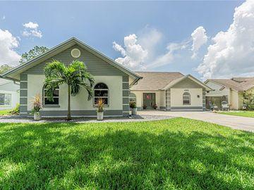 4302 KIPLING AVENUE, Plant City, FL, 33566,