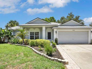 1065 SCENIC VIEW CIRCLE, Minneola, FL, 34715,