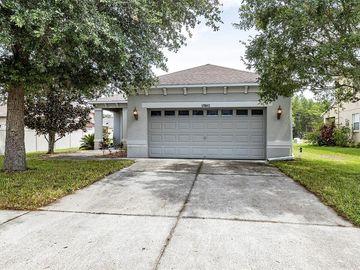 17843 CUNNINGHAM COURT, Land O Lakes, FL, 34638,