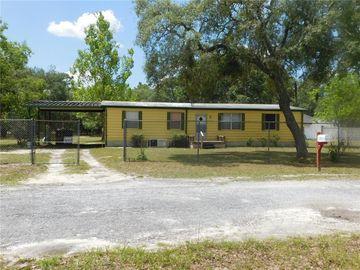 15536 PETER MAX BOULEVARD, Hudson, FL, 34669,