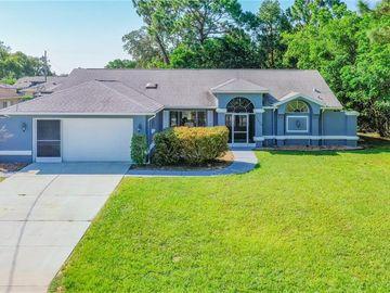11408 BEECHDALE AVENUE, Spring Hill, FL, 34608,