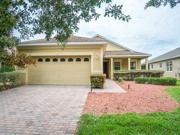104 FLAME VINE WAY, Groveland, FL, 34736,