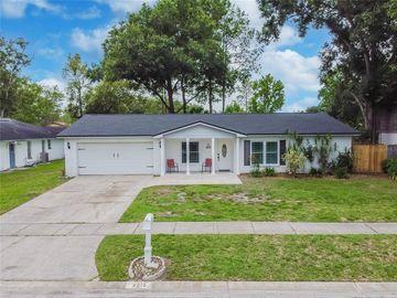 4215 BRIARBERRY LANE, Tampa, FL, 33624,
