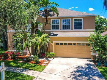 606 JUNE LAKE LANE, Brandon, FL, 33510,