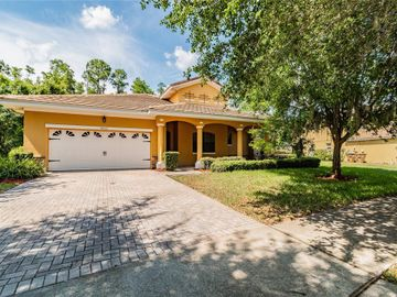 9051 PAOLOS PLACE, Kissimmee, FL, 34747,