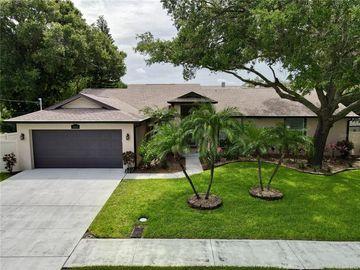 9061 64TH WAY N, Pinellas Park, FL, 33782,