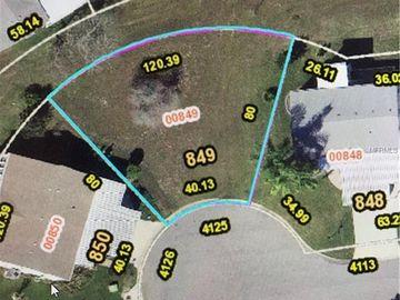 4125 MYRTLE OAK COURT #849, Zellwood, FL, 32798,