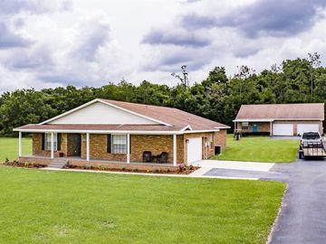 10401 ELBERTON AVENUE, Thonotosassa, FL, 33592,
