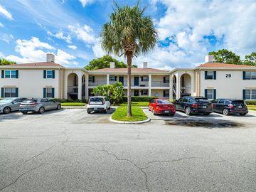 10391 CARROLLWOOD LANE #294, Tampa, FL, 33618,