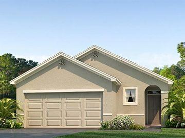 16041 TUSCANY HILLSIDE ROAD, Odessa, FL, 33556,