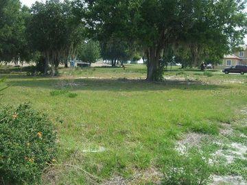 10525 BROADLAND PASS, Thonotosassa, FL, 33592,