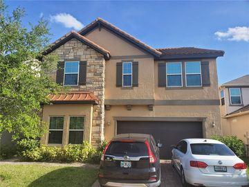 3266 PALATKA STREET, Orlando, FL, 32824,