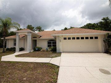 2901 ELDIENTE WAY, Kissimmee, FL, 34758,