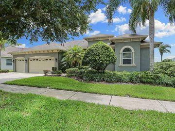 10707 PLANTATION BAY DRIVE, Tampa, FL, 33647,