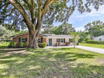 207 ORANGE DR, Lutz, FL, 33548,