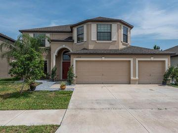 13909 FELIX WILL ROAD, Riverview, FL, 33579,