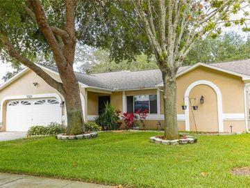 7323 SKYVIEW AVENUE, New Port Richey, FL, 34653,