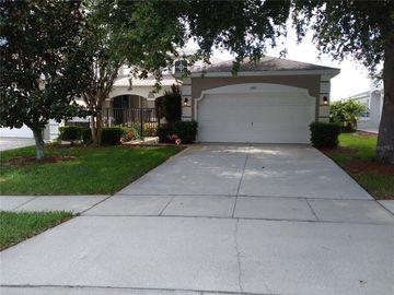 3160 RIVER BRANCH CIRCLE, Kissimmee, FL, 34741,