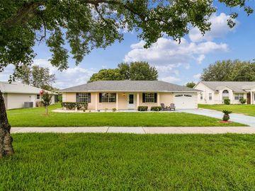 12242 WEDGEFIELD DRIVE, Grand Island, FL, 32735,