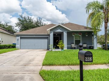 228 TRES REYES LANE, Groveland, FL, 34736,