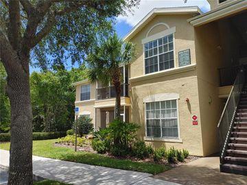 5125 PALM SPRINGS BOULEVARD #6101, Tampa, FL, 33647,