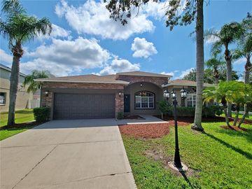 826 FRANKFORD DRIVE, Brandon, FL, 33511,