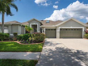 20825 CEDAR BLUFF PLACE, Land O Lakes, FL, 34638,