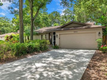 3211 COVENTRY N, Safety Harbor, FL, 34695,