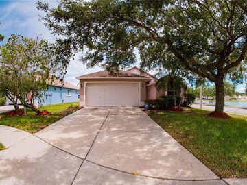 8828 SEA ISLAND WAY, Tampa, FL, 33635,
