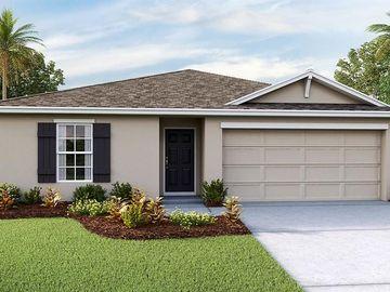 38370 SONNETT LANDING AVENUE, Zephyrhills, FL, 33540,