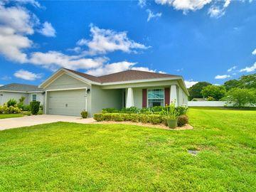 441 ST GEORGES CIRCLE, Eagle Lake, FL, 33839,