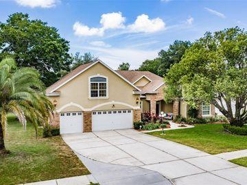 425 ROMINE COURT, Spring Hill, FL, 34609,